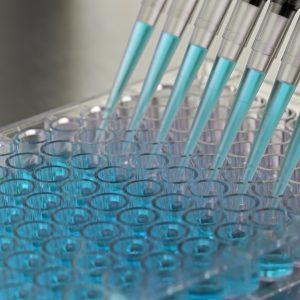Chemical Regulatory Handbooks